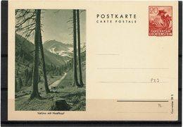 FAL14 - LIECHTENSTEIN CARTE POSTALE MICHEL N°P23 - Stamped Stationery