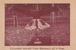 Circus Bohemia Artist Ferdo Khermayer - Zirkus