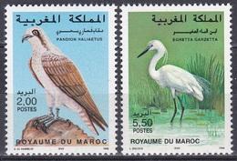 Marokko Morocco 1996 Tiere Fauna Animals Vögel Birds Oiseaux Aves Uccelli Adler Eagles Reiher Heron, Mi. 1289-0 ** - Morocco (1956-...)