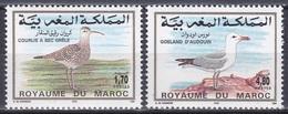 Marokko Morocco 1994 Tiere Fauna Animals Vögel Birds Oiseaux Aves Uccelli Brachvogel Möwe Seagull Gull, Mi. 1257-8 ** - Maroc (1956-...)