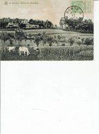 RENAIX RONSE  ENVIRONS DE L HEMELBERG / R6 - Renaix - Ronse