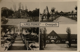 Overpelt // Meerluik 't Pelterke 19?? - Overpelt