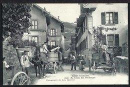 Scènes Vaudoises - 3108 - Au Temps De Vendanges - Weinlese - 1905 - VD Vaud
