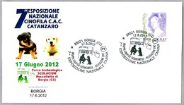 7ª EXP. CANINA NACIONAL - 7th NATIONAL DOG SHOW. Borgia, Catanzaro, 2012 - Perros