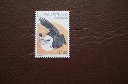 6-309  Europa 2019 Mallard Snow Bunting Raven   Groenland Greenland Moineau Passereau Corbeau Corvidé - Canards