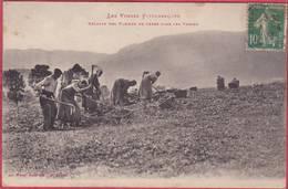 CPA 88 Les Vosges Pittoresques  Récolte Es Pommes De Terre Dans Les Vopsges V - Unclassified