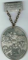 Kleinich 1978 - Entriegelungschips Und Medaillen