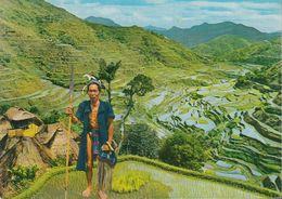 Philippinen - The Banaue Rice Terraces - Nice Stamp - Filippine