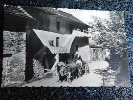Magadino (M7) - TI Ticino