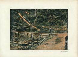 Document (1880) : Guyane, Saint-Elie, Le Grand Batardeau, Construction, Photographie Aquarellée, Souvenir De Voyage - Guyane
