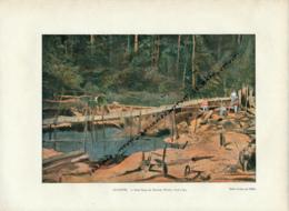 Document (1880) : Guyane, Saint-Elie, Le Schluss, Rigole Pour L'or, Photographie Aquarellée, Souvenir De Voyage - Guyane
