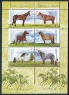 RAZAS EQUINAS. ARGENTINA AÑO 2000 JALIL 132 MNH HOJA BLOC CON DOS COMPLEMENTOS SIN VALOR. CHEVAUX HORSES CABALLOS -LILHU - Nuovi