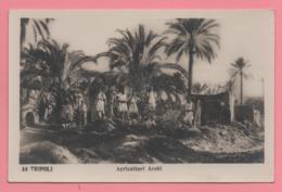 Tripoli - Agricoltori Arabi - Libia