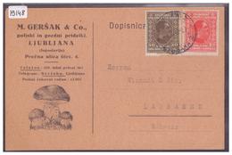 SLOVENIE - LJUBLJANA - M. GERSAK & Co, POLJSKI IN GOZDNI PRIDELKI - CHAMPIGNONS - PILZEN - TB - Slovénie