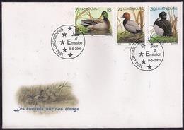 Luxembourg - 2000 - FDC - Canards - Canard Colvert - Pochard D'Europe - Canard Touffet - Canards