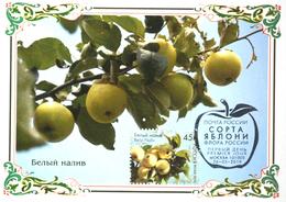 2457 Flora Of Russia Apple Varieties Maximum Cards 2019 - Maximum Cards