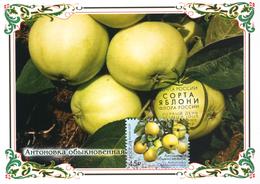 2458 Flora Of Russia Apple Varieties Maximum Cards 2019 - Maximum Cards