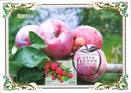 2459 Flora Of Russia Apple Varieties Maximum Cards 2019 - Maximum Cards