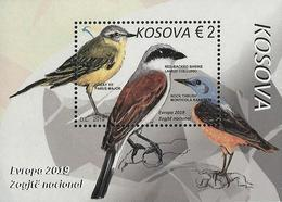 "KOSOVO /KOSOVA REPUBLIC -EUROPA 2019 -NATIONAL BIRDS.-""AVES -BIRDS -VÖGEL -OISEAUX""- HOJITA BLOQUE - 2019"