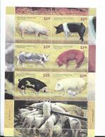 ARGENTINA 2011 PIGS, PORCINOS, FAUNA MINIATURE SHEET 6 VALUES MNH - Argentina
