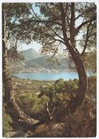 PUERTO DE ANDRAITX, MALLORCA. POSTED 1970 - Mallorca