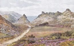 LYNTON - VALLEY OF ROCKS - Lynmouth & Lynton