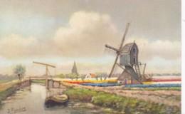 RURALWINDMILL - Windmills