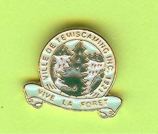 Pin's Ville Du Québec Temiscaming - 10FF23 - Villes