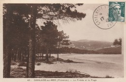 FRANCE - CPA - CAVALAIRE SUR MER - LA PINEDE ET LA PLAGE - Cavalaire-sur-Mer