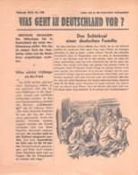 """WWII WW2 Flugblatt Tract Soviet Propaganda """"Was Geht In Deutschland Vor?"""" Februar 1943 Nr. 196  CODE 2415 - 1939-45"""