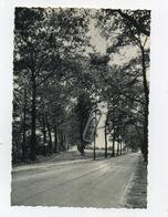RETIE :  Steenweg Op Kasterlee    ( Format 15 X 10.5 Cm ) - Retie