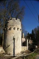 Villedieu-sur-Indre (36)- (Edition à Tirage Limité) - France