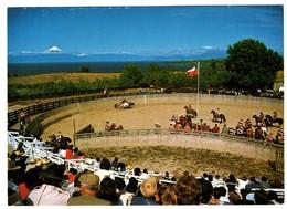 Chile Rodeo Frutillar Décima Region - Chile