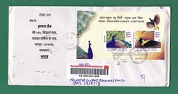 INDIA Inde Indien - REGISTERED POSTAL USED COVER - PERMANENT PICTORIAL CANCELLATION Of SIBERIAN CRANE On JOINT ISSUE M/S - Grues Et Gruiformes