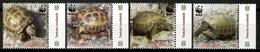 Armenia 2006 / Reptiles Turtles WWF MNH Tortugas Schildkröten / Cu13928  5-25 - Tortugas