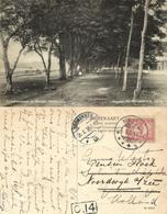 Indonesia, MOLUCCAS MALUKU, Banda Neira, Societeitsstraat (1916) Postcard - Indonesië