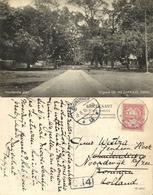 Indonesia, MOLUCCAS MALUKU, Banda Neira, Residence Pier (1916) Postcard - Indonesië