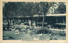 #110719 - 74 VULBENS Le Parc Avicole - élevage Agriculture Poule - Frankreich