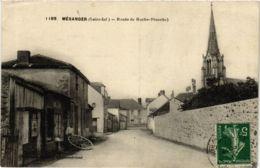 CPA MÉSANGER Route De Roche-Blanche (864387) - France