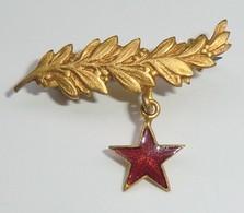 Petite Broche Dorée Palme Et étoile Rouge En émail Au Dessous - France