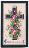 Dp. Reijners Annetje. ° Druten 1858 † Gesticht Voorburg Bij Vucht 1893  (2 Scan's) - Religion & Esotérisme