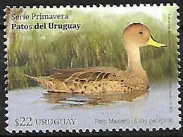 Uruguay - MNH - 2018 -Yellow-billed Pintail    Anas Georgica - Canards