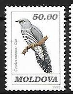 Moldova - MNH - 1993 -    Common Cuckoo    Cuculus Canorus - Cuckoos & Turacos