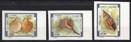 Non-dentelé/Année 1997-N°1148/1150 Neufs**MNH/imperforate : Faune - Coquillages: Série Complète    (md) - Algeria (1962-...)