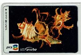 TELECARTE D ISRAEL COQUILLAGE 1 SHELL MUSCHEL T000001 - Fish