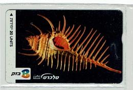 TELECARTE D ISRAEL COQUILLAGE 2 SHELL MUSCHEL T000002 - Fish