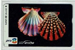 TELECARTE D ISRAEL COQUILLAGE 3 SHELL MUSCHEL T000003 - Fish