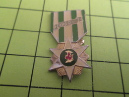 414c Pins Pin's / Rare & Belle Qualité THEME MILITARIA : MEDAILLE A IDENTIFIER ? GUERRE ALGERIE ? - Army