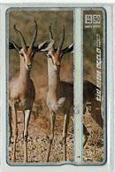 TELECARTE D ISRAEL ANIMAL SAUVAGE 4 T000008 GAZELLE - Jungle