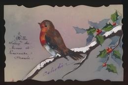 CELLULOID   VOGEL BIRD  OISEAU  - - Phantasie